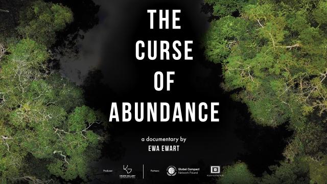 The Curse of Abundance