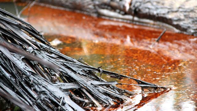 Endless Oil Spills
