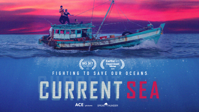 Current Sea