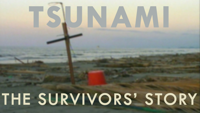 Tsunami: The Survivor's Story