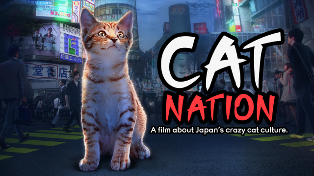 Cat Nation