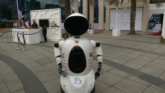 Dubai Robotics